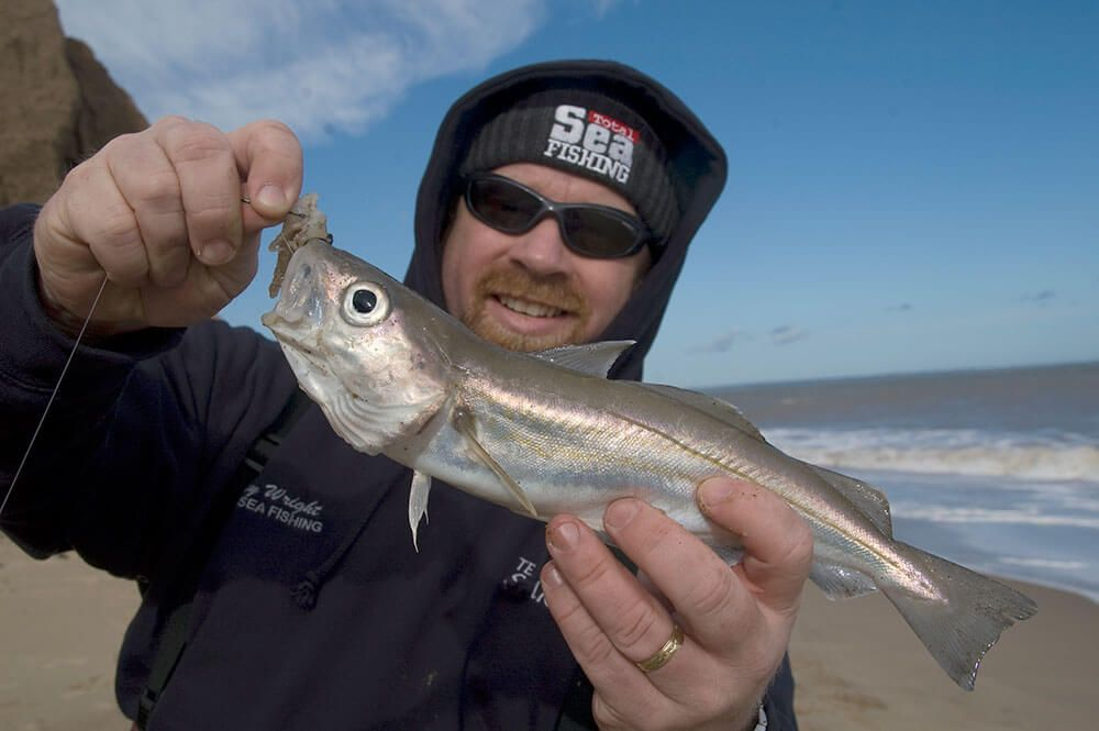 Fishing for shore whiting