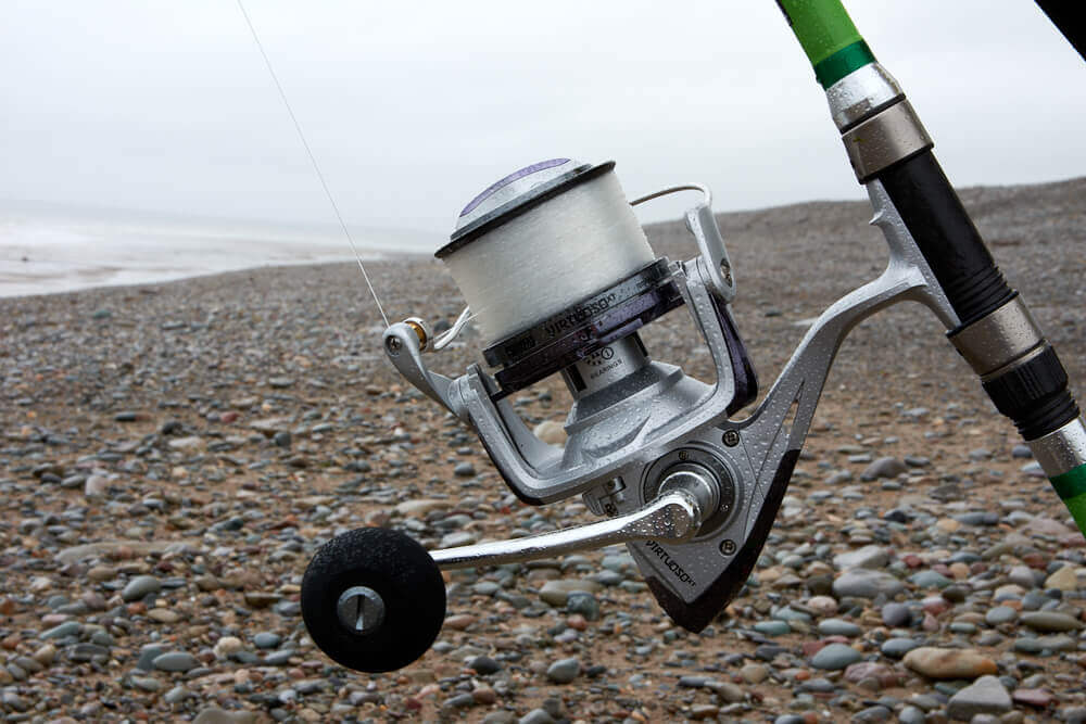 Large fixed spool reel for smoothhound fishing